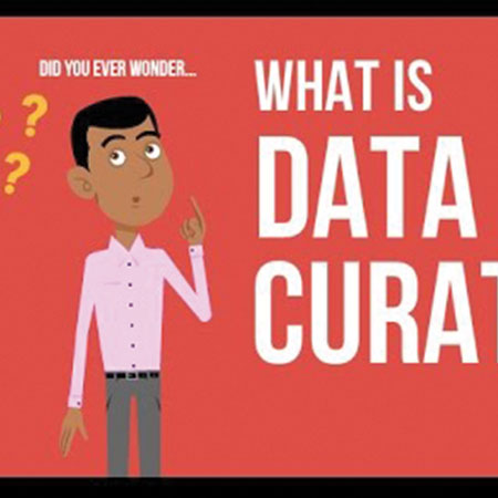 screenshot from data curation video